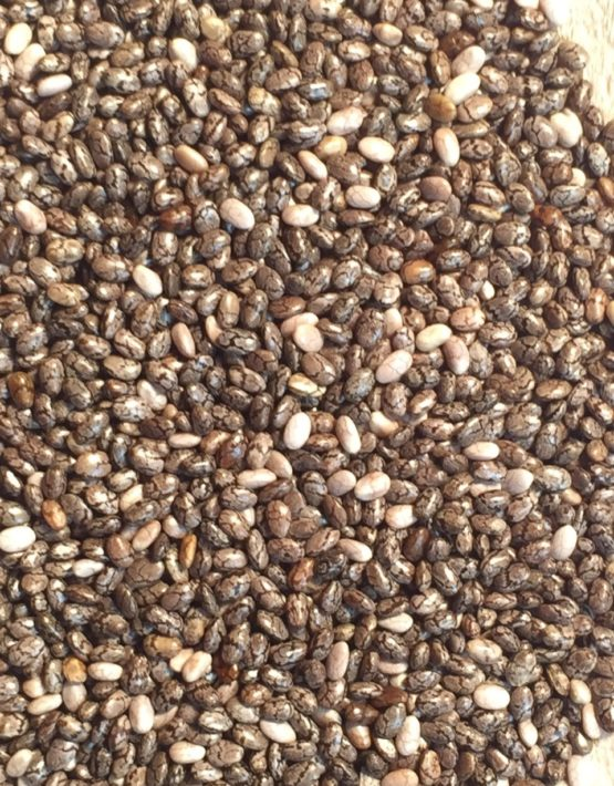 chia-seeds-closeup-1